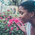 【香りが集中力を高める】集中力UPに効果のある香り6選