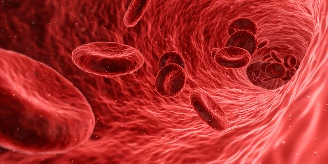 血行のイメージ