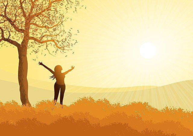 太陽光のイメージ